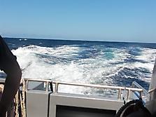 Gozo-2010_58