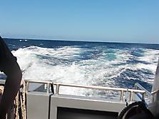 Gozo-2010_6