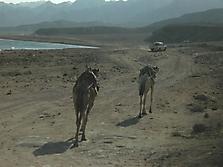 Ägypten 2007_4
