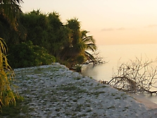 Malediven 2007_30
