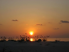 Malediven 2007_32