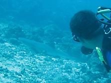 Malediven 2007_34