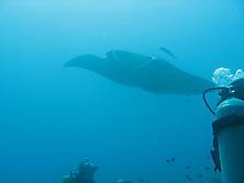 Malediven 2007_38