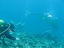 Malediven 2007_39