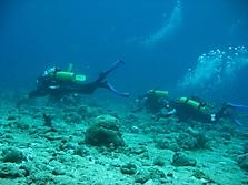 Malediven 2007_45