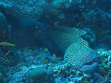 Malediven 2007_47