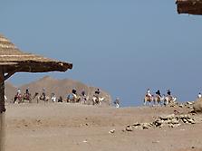 Ägypten Dahab_11