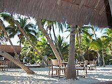 Mexico-yucatan-PlayaDelCarmen-2012_16