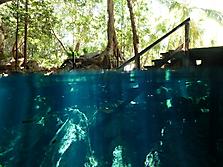 Mexico-yucatan-PlayaDelCarmen-2012_17