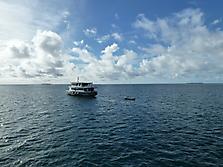 Malediven-Südtour-MaldivanDream-2013_16