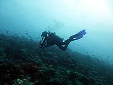 Malediven-Nordtour-HopeCruiser-2014_18