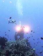 Malediven-Nordtour-HopeCruiser-2014_30