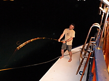 Malediven-Nordtour-HopeCruiser-2014_37