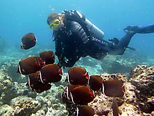 Malediven-Nordtour-HopeCruiser-2014_48