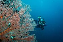 Sulawesi-Selayar_41