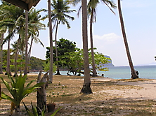 Thailand-2010_10